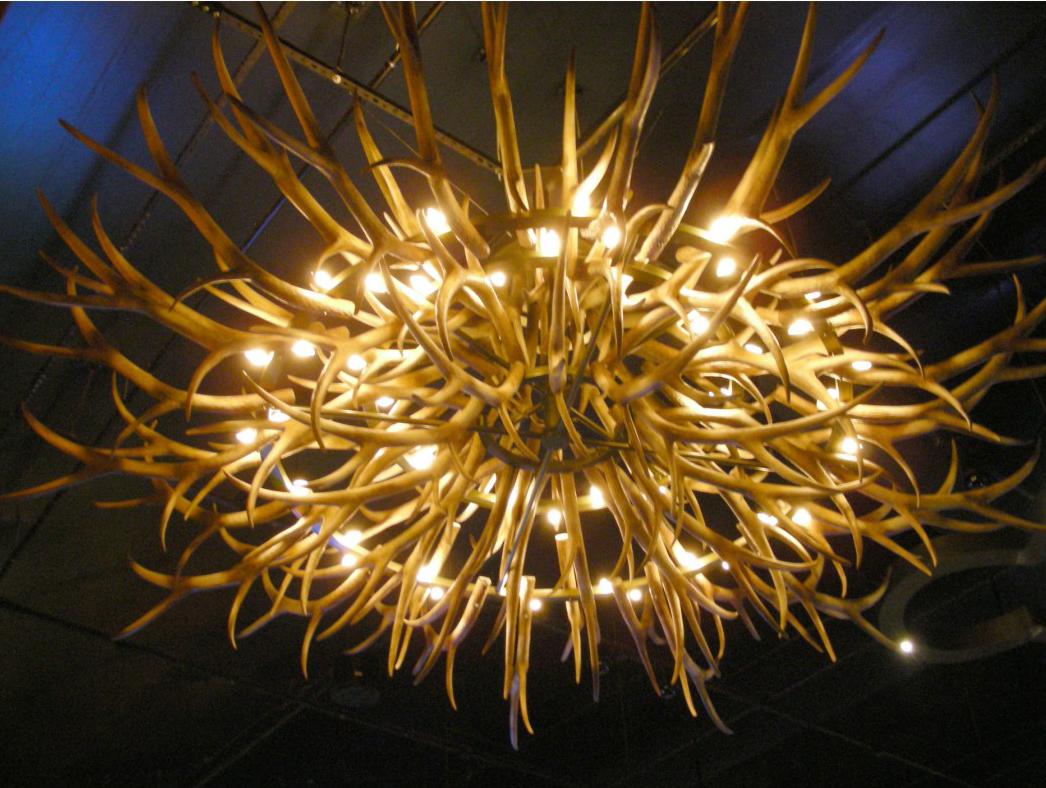luminaries 9